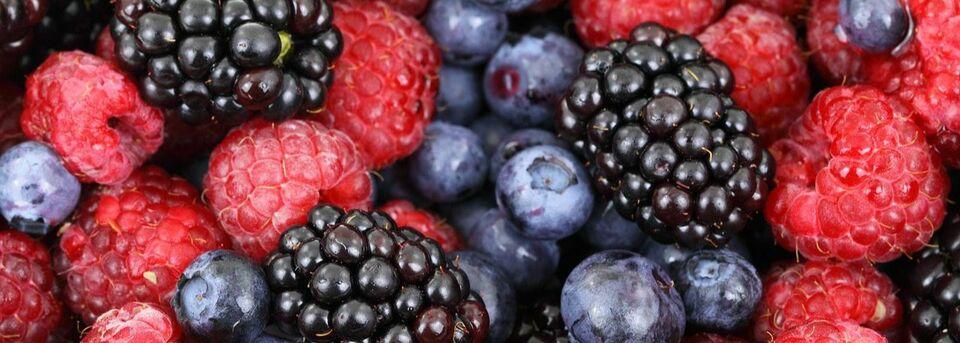 meet nutritional needs and avoid allergens dietician diabetes educator